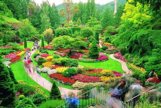 3 butchart gardens