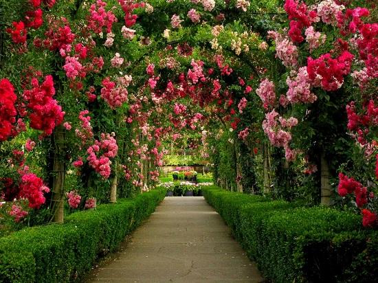 4 butchart gardens