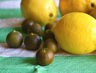 lemon calamansi
